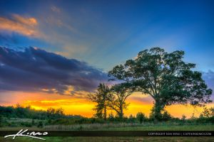 Virginia-Landscape-Beautiful-Sunset-with-Tree by CaptainKimo