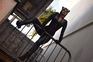 Cosplay - Catwoman by slayer500