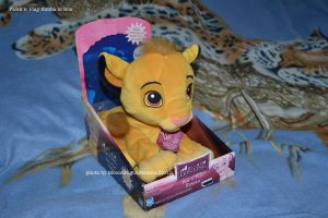 Paw n Play Simba in Box - TLK by MoondragonEismond