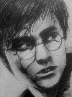 Harry Potter 2011 by Bottomley3