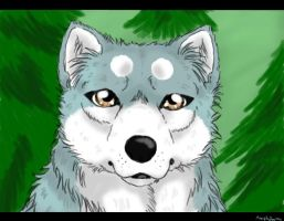 -real blue- by Meri-theDog