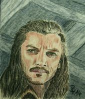 Bard the Bowman by LoonaLucy
