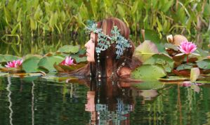 Water Lilies 34 by MarjoleinART-Stock