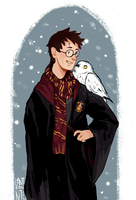 harry pottah by LanternKite