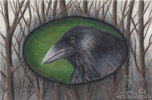 Crow and Trees by TransientArt