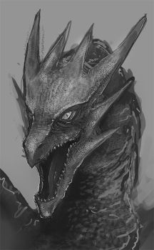 Dragon sketch by mrNepa