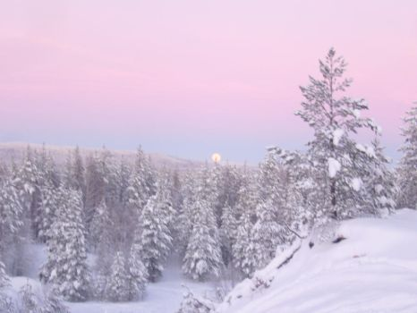 A winter in Sweden by JulieThatsMe