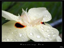 Mourning Dew by Lews-Therin