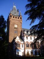 The tower of the city hall - Rathausturm by Aewendil