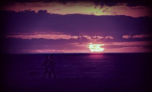together by ilovenatural