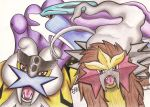 Entei, Suicune and Raikou by Chrisszilla
