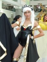Storm 01 AX2011 by CoonDog69