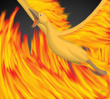 146 Moltres :. by Z-88