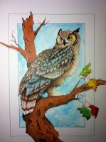 Horned Owl by ringbearer80