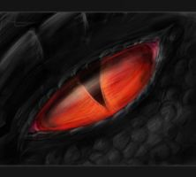 Dragon Eye by ShadowDragon22