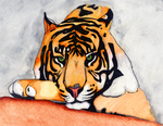 Tiger Watercolor by PXSausage