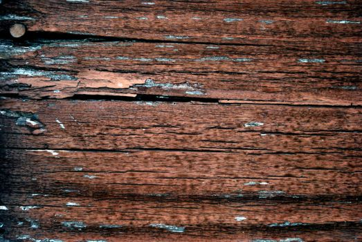 texture stock 244 by redwolf518stock