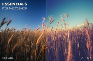 Essentials for Photoshop and Photoshop Elements by photographypla-net