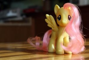 Fluttershy in the Morning by PlaidRed