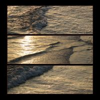 Sun on Surf by canology