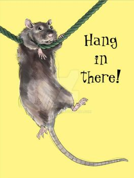 Hang In There Rat by nellems