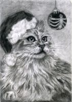 Christmas Cat by 99scribbles