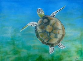 Green Turtle by WendyMitchell