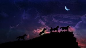 Horses at Night by taniva