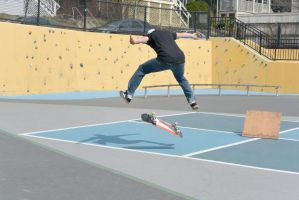 The Skateboarder Action Shot 11 by Miss-Tbones