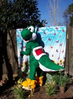 Yoshi Costume by LilleahWest