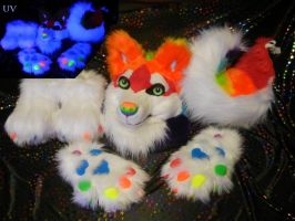 Rainbow husky partial by DrakonicKnight