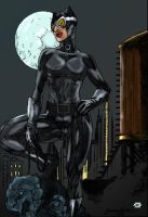 Catwoman 2 by Blindman-CB