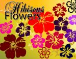 Hibiscus Flowers Set by fiftyfivepixels