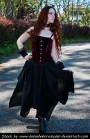 Romantic Goth Stock 2 by DanielleFioreModel