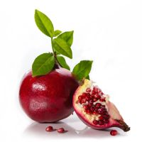 Pomegranate 01 by NellyGraceNG