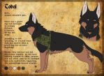 CharacterSheet - Tobol by BlueHunter