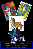 Limited Commissions Available by StangWolf
