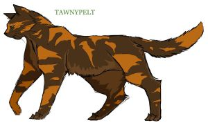Tawnypelt version 2 by Lithestep