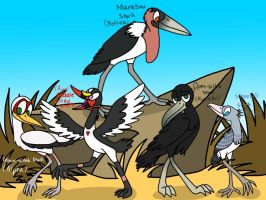 The African Storks by AhO4464