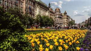 Prague - Vaclavske Namesti by pingallery