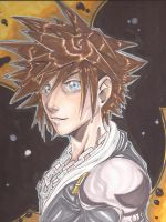 Sora Colored by Dericules