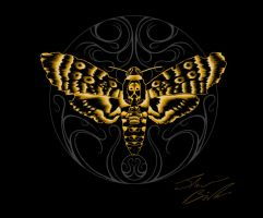 Death's-head Hawkmoth by Tommster