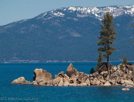 Tree Point by MartinGollery