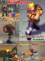 SF4 Ken's tiger stripe outfit by cicakkia