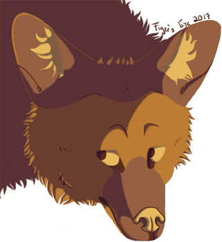 Coywolf Bust by Tigerpool
