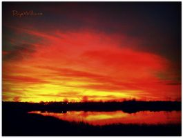 Sun Sets Red by DayeWilliams