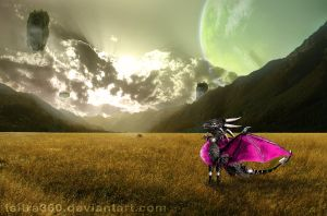 Let Cynder be Real_Photo Manip by Tsitra360