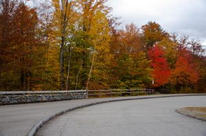 White Mountains  Fall Foliage  096 by FairieGoodMother