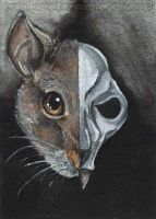 Rat Skull by sobeyondthis