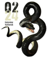 Snake Clock for xwidget by jimking